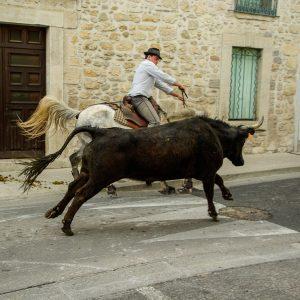 Visiter Arles Camargue